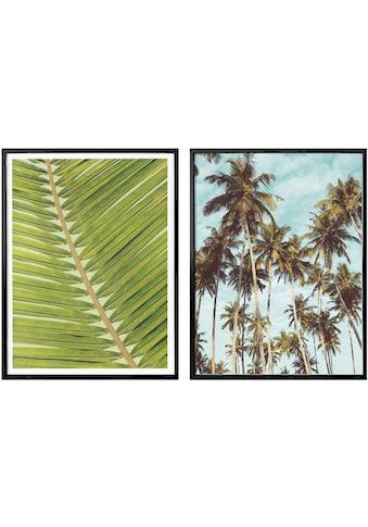 Wall-Art Poster »Palmenblätter«, (Set, 2 St.), mit Rahmen, Poster, Wandbild, Bild,... kaufen