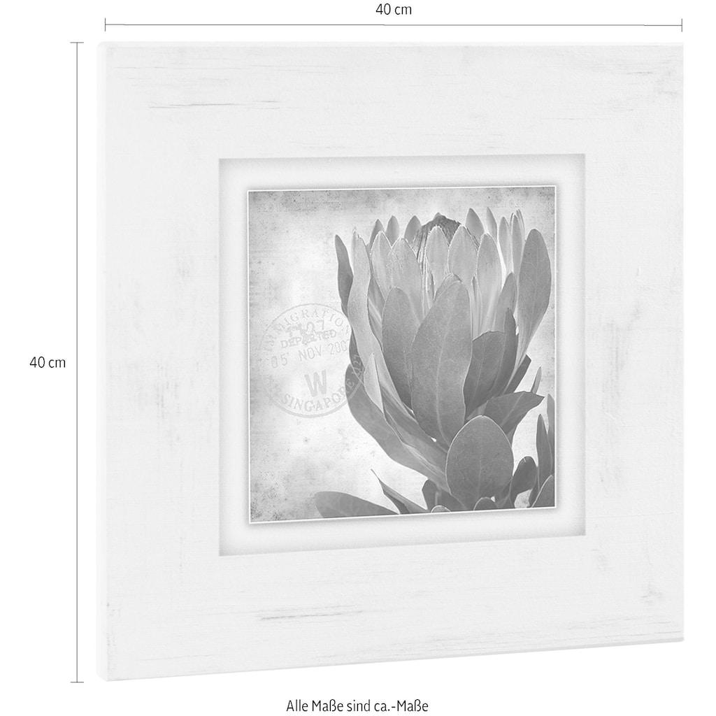 Home affaire Holzbild »Blüte«, 40/40 cm