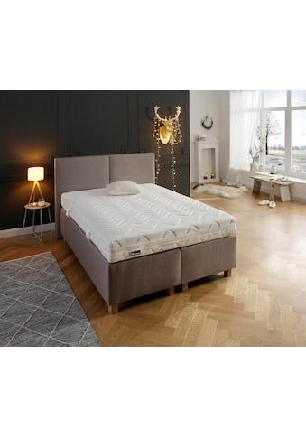 fan Schlafkomfort Exklusiv Taschenfederkernmatratze »Multiplus T«, 544 Federn, (1... kaufen
