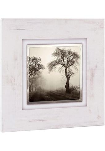Home affaire Holzbild »Bäume im Nebel«, 40/40 cm kaufen