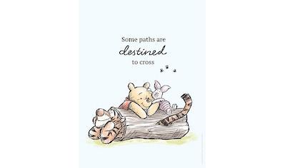 KOMAR XXL Poster »Winnie Pooh Path« kaufen
