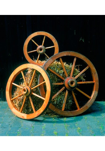 Promadino Wagenrad, groß kaufen