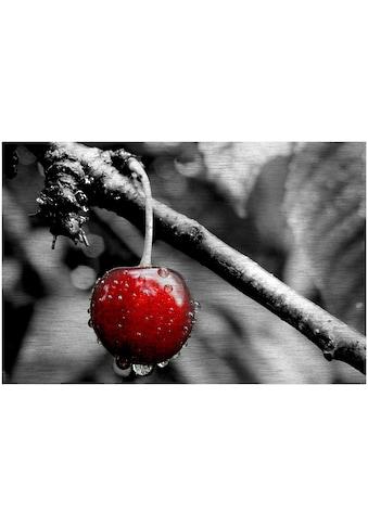 Art & Pleasure Metallbild »Cherry tree«, Foto kaufen