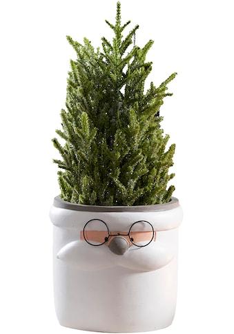 Übertopf »Santa Claus«, aus Keramik, Höhe 15,7 cm kaufen