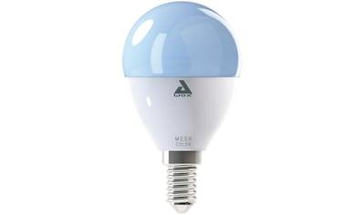 EGLO »LM_LED_E14« LED - Leuchtmittel, E14, Farbwechsler Warmweiß Tageslichtweiß Neutralweiß kaufen