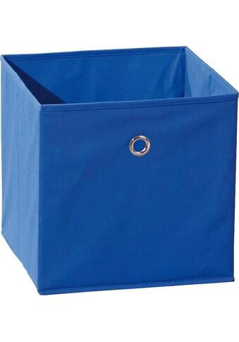 INOSIGN Faltbox »Winny Blau« kaufen