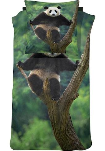 damai Bettwäsche »Panda«, mit einem Pandabären kaufen
