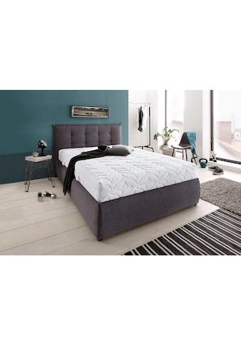 BeCo EXCLUSIV Kaltschaummatratze »Luxus für Gewichtige«, 23 cm cm hoch, Raumgewicht:... kaufen