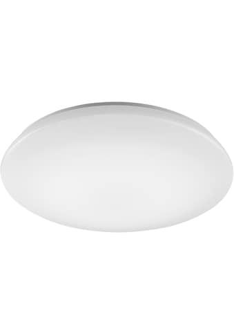 TRIO Leuchten LED Deckenleuchte »NALIDA«, LED-Board,... kaufen