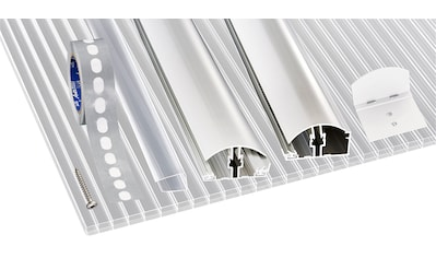 GUTTA Set: Doppelstegplatte »GUTTGLISS«, 4 Stück Hohlkammerplatte 16 mm, BxL: 98x250 cm kaufen