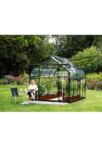 Vitavia Gewächshaus »Diana 8300«, (Komplett-Set, mit 3-tlg. Zubehör) kaufen