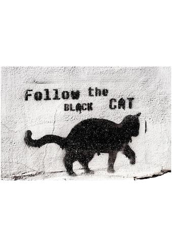 Art & Pleasure Metallbild »Follow the black cat«, Katzen kaufen