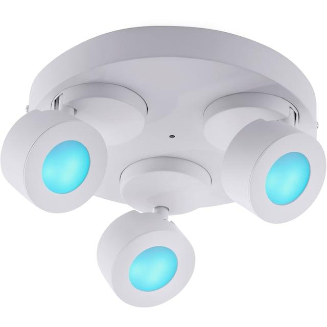 TRIO Leuchten,LED Deckenspots»SANCHO«,