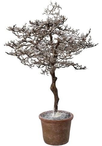 Kunstbaum »Hainbuche im Topf« (1 Stück) kaufen
