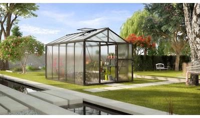 Vitavia Gewächshaus »Zeus 10000« kaufen