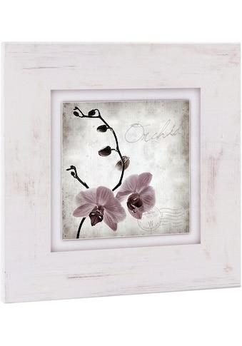 Home affaire Holzbild »Orchidee«, 40/40 cm kaufen