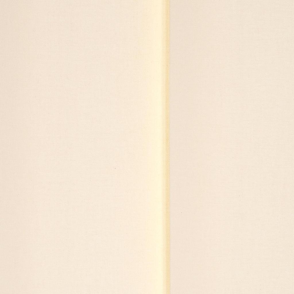 Liedeco Lamellenvorhang »Vertikalanlage 89 mm«