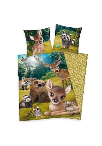 Herding Kinderbettwäsche »Animal Club Forest, Baumwoll-Renforcé« kaufen