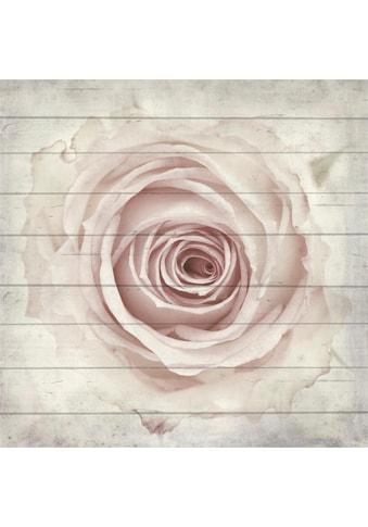 Home affaire Holzbild »Rose von oben«, 40/40 cm kaufen