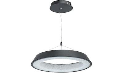 DeMarkt Hängeleuchte »Omega«, LED-Board, 1 St., Tageslichtweiß, Pendelleuchte, Pendellampe kaufen