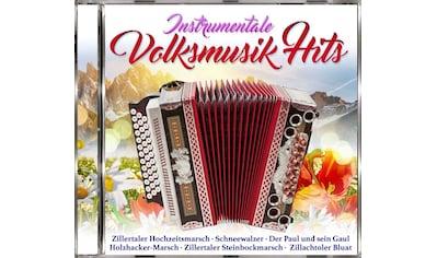 Musik-CD »Instrumentale Volksmusik Hits / Various« kaufen