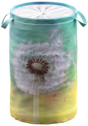 Sanilo Wäschekorb »Pusteblume«, 60 Liter, faltbar, mit Sichtschutz kaufen