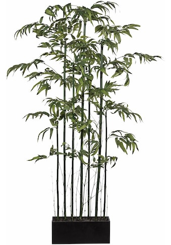 Creativ green Kunstbambus »Bambus Raumteiler« kaufen