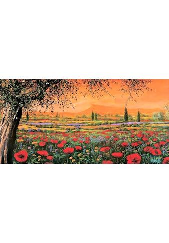DELAVITA Kunstdruck »TEBO MARZARI / Pianura in fiore«, (1 St.) kaufen
