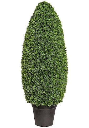 Creativ green Kunstpflanze »Buchsbaumsäule im Formschnitt«, im Kunststofftopf kaufen