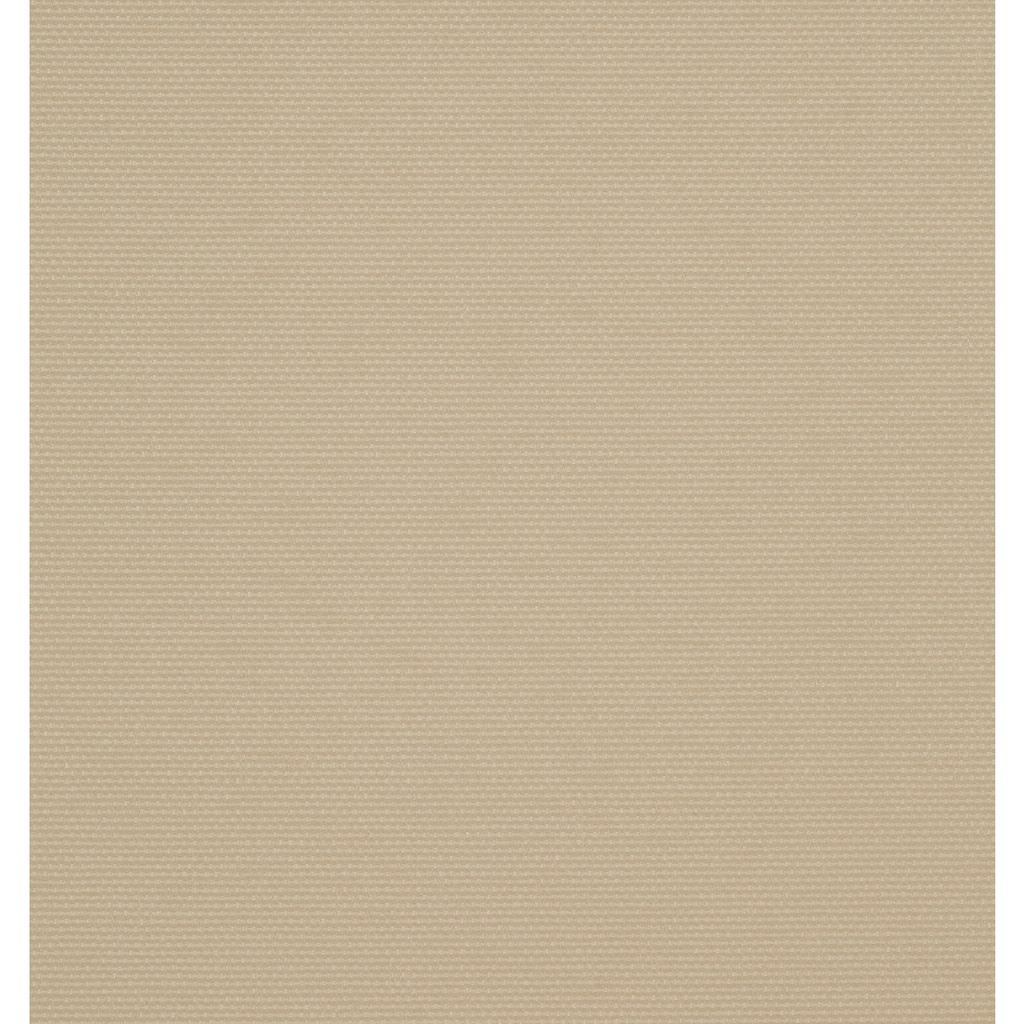 KONIFERA Seitenmarkise, BxH: 600x160 cm