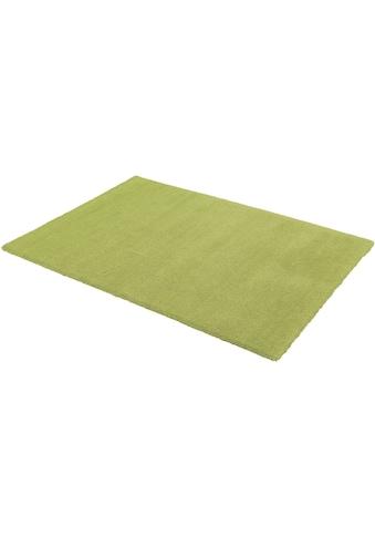 ASTRA Teppich »Livorno«, rechteckig, 27 mm Höhe, Besonders weich durch Microfaser,... kaufen