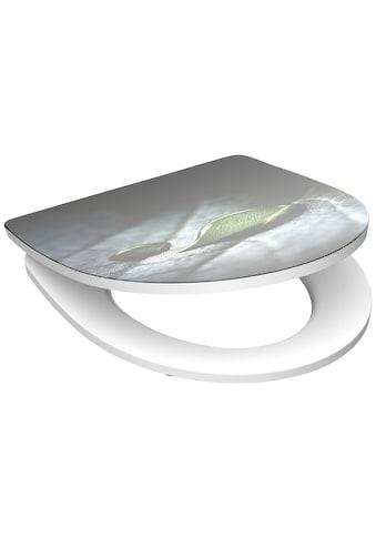 Schütte WC-Sitz »Raindrop«, mit Absenkautomatik kaufen