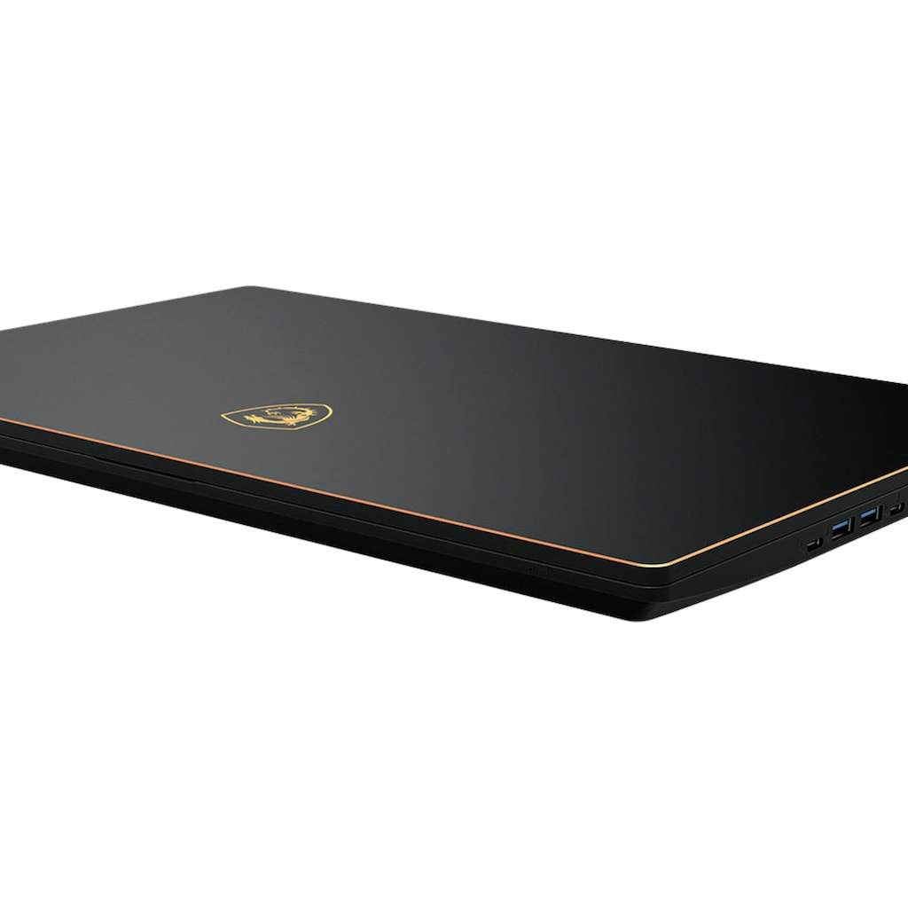MSI Notebook »GS75 Stealth 10SE-1032«, ( 1000 GB SSD)