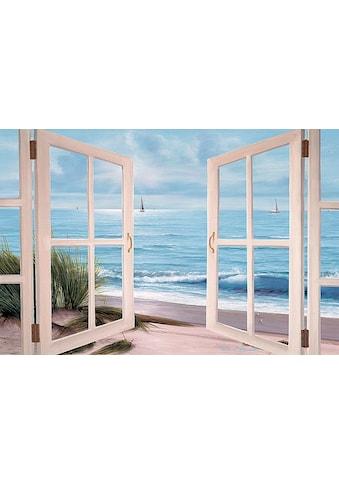 Home affaire Leinwandbild »D. ROMANELLO / Strandläufer vor dem Fenster«, (1 St.) kaufen