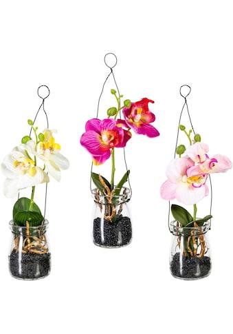 Creativ green Kunstpflanze, 3er Set kaufen
