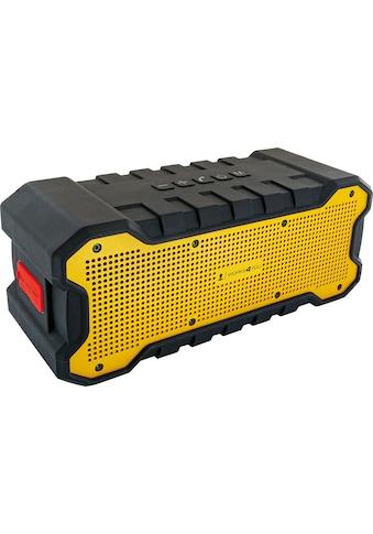 Schwaiger Lautsprecher »mit TWS Funktion« kaufen