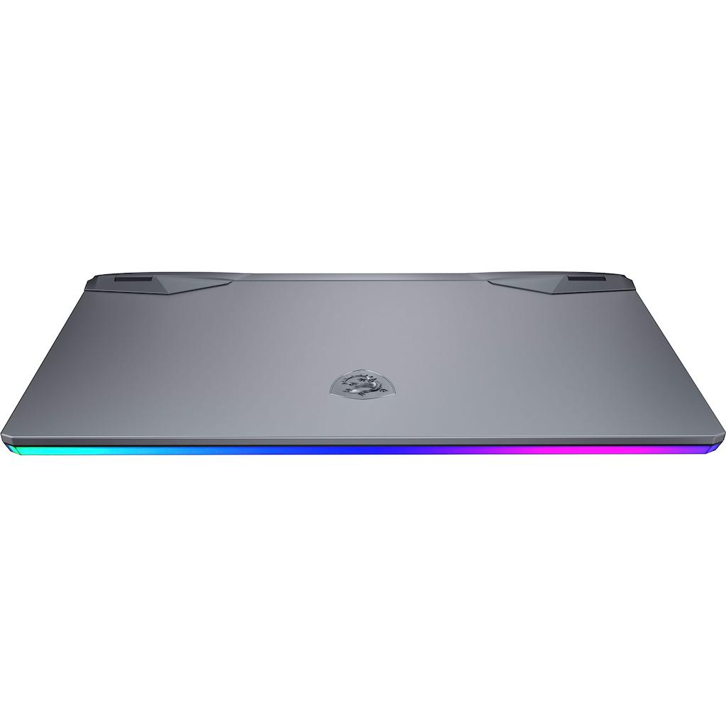 MSI Gaming-Notebook »GE66 Raider 10UG-261«, (1000 GB SSD)