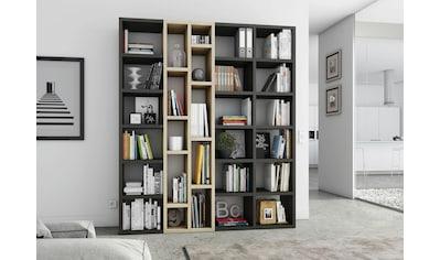fif möbel Raumteilerregal »TOR390-2«, Breite 190 cm kaufen