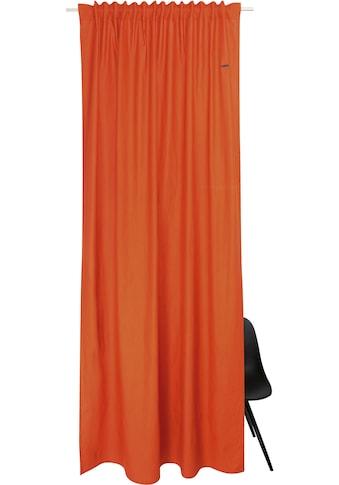 Esprit Vorhang »Neo«, aus nachhaltiger Baumwolle kaufen