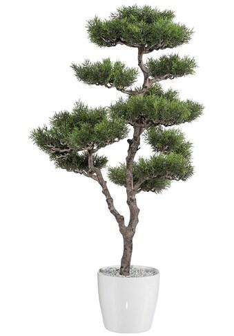 Creativ green Kunstbaum »Bonsai Zeder« (1 Stück) kaufen