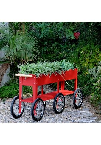 Herstera Garden Hochbeet »Wheels«, BxTxH: 150x35x80 cm kaufen