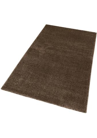 Teppich, »Ravello 170«, ASTRA, rechteckig, Höhe 20 mm, maschinell gewebt kaufen