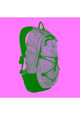 Regatta Daypack »35 Liter Atholl II Rucksack« kaufen