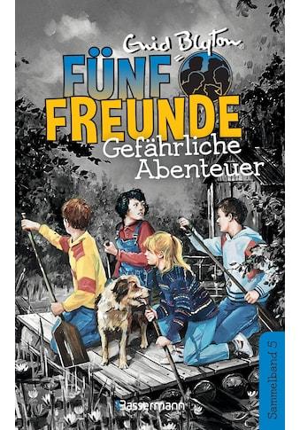 Buch »Fünf Freunde - Gefährliche Abenteuer - DB 05 / Enid Blyton« kaufen