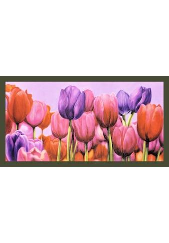 my home Bild mit Rahmen »CORTESE / Campo di Tulipani«, (1 St.) kaufen