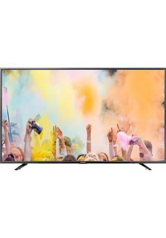 "Sharp LED-Fernseher »65BJ5E«, 164 cm/65 "", 4K Ultra HD, Smart-TV kaufen"