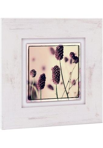 Home affaire Holzbild »Gräser mit Blüten«, 40/40 cm kaufen