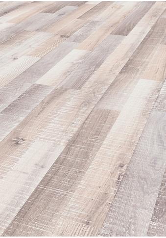 TER HÜRNE Laminat »Eiche sägerau - grauweiß«, mit fühlbarer Oberfläche und Klicksystem kaufen