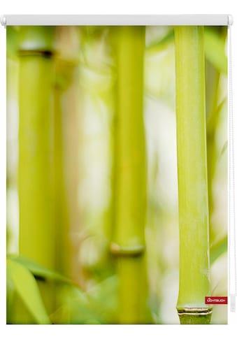 LICHTBLICK ORIGINAL Seitenzugrollo »Klemmfix Motiv Bambus«, Lichtschutz, ohne Bohren,... kaufen
