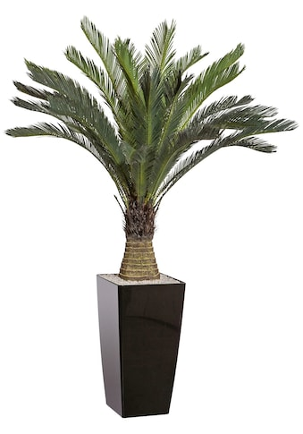 Creativ green Kunstpalme »Cycaspalme«, im Kunststofftopf kaufen